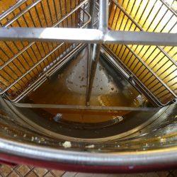 Blick von oben in die Schleuder, unten sammelt sich der Honig
